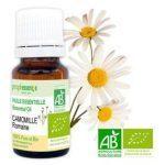 camomille-romaine-bio-huile-essentielle